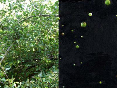 Skizze der Planet im Apfelbaum