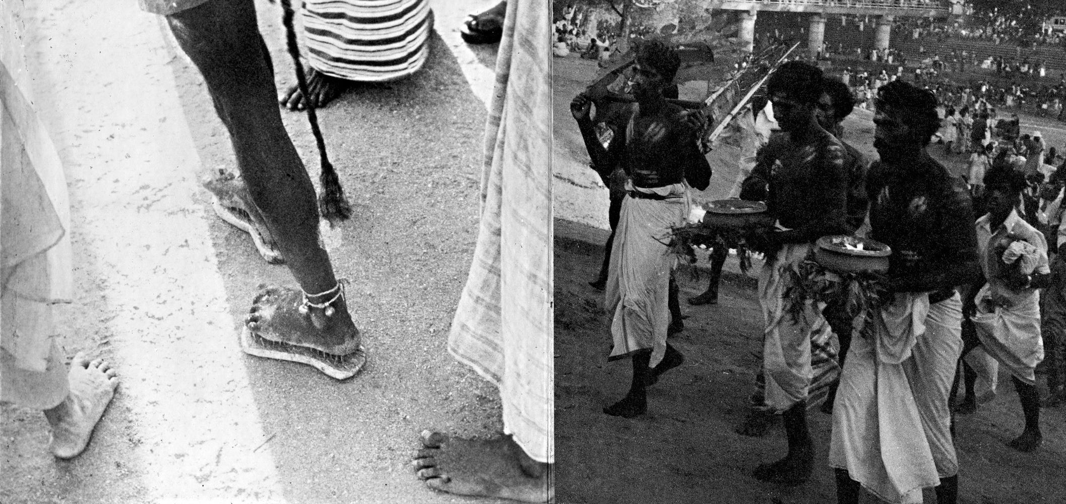 Sri Lanka4016 Kopie