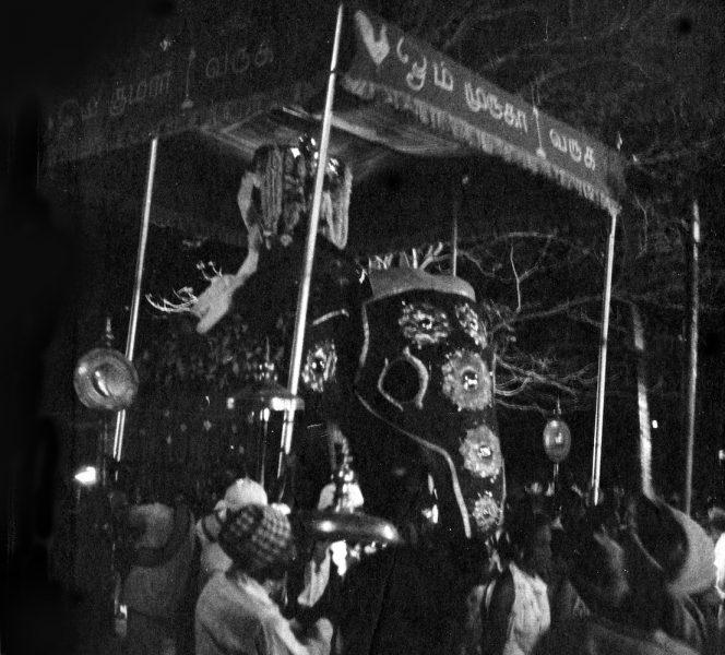 fotoSri Lanka1006 Kopie